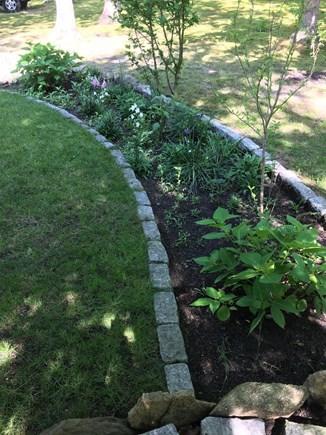 Oak Bluffs Martha's Vineyard vacation rental - Garden