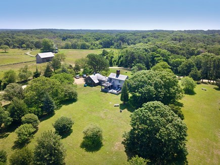 West Tisbury Martha's Vineyard vacation rental - Five acres of open space, trees, and ancient stone walls.