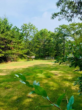 West Tisbury Martha's Vineyard vacation rental - Large level side yard for outdoor activities and privacy