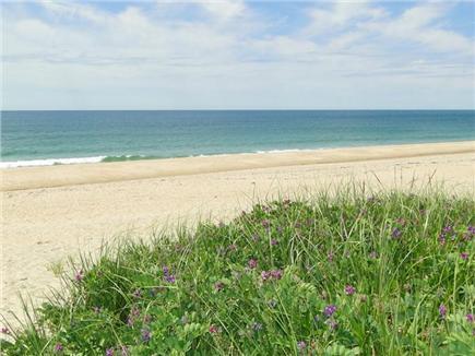 Surfside, Nantucket Nantucket vacation rental - Walk to Fishermans or Nobadeer beaches