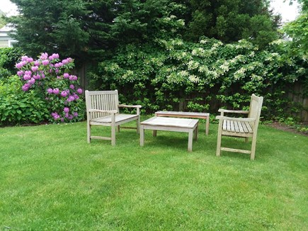 Nantucket town Nantucket vacation rental - Large Side Yard Surounded by Hydrangeas and Privet Hedges.
