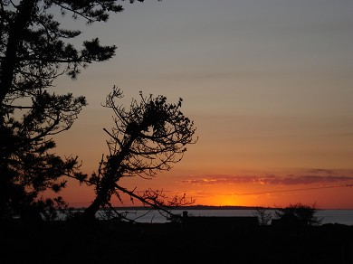 Madaket Nantucket vacation rental - Madaket sunset views, rental ID 15012