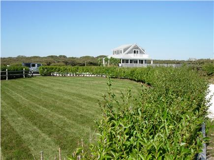 Tom Nevers, Siasconet Nantucket vacation rental - Carriage House with attached pool