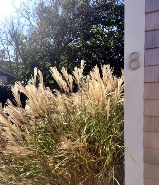Siasconset Vacation Rental Home In Nantucket MA 02564, 100