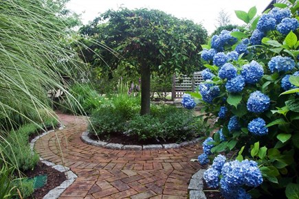 Tom Nevers, Sconset Nantucket vacation rental - Hydrangeas abound. Secret garden with firepit.