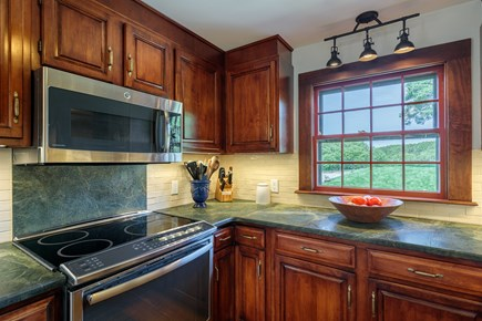 Quidnet Nantucket vacation rental - Electric Induction range and convection oven