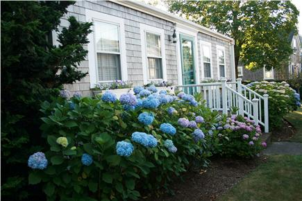 Nantucket town, Nantucket Nantucket vacation rental - Nantucket town Vacation Rental ID 17671