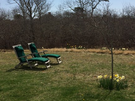 Tom Nevers Nantucket vacation rental - Teak steamer chaises on the front lawn