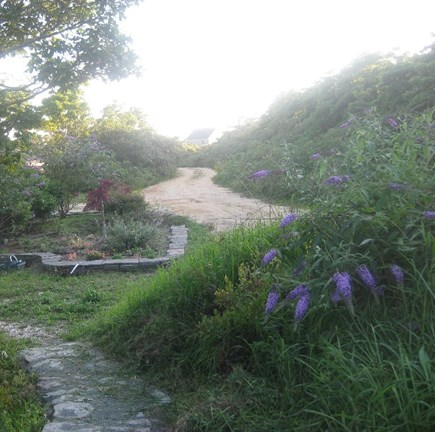 Tom Nevers East Nantucket vacation rental - Lush, bucolic and private setting