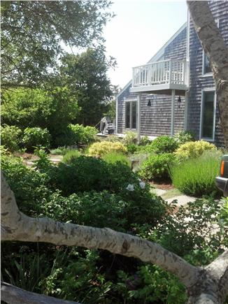 Madaket Nantucket vacation rental - Madaket Beach House  -  ''NOTHANKAU''