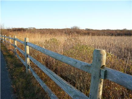 Tom Nevers Nantucket vacation rental - The cottage is nearby 6 miles of conservation land.