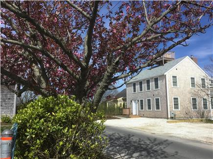 Nantucket town, Town Nantucket vacation rental - Quiet Street with off street parking