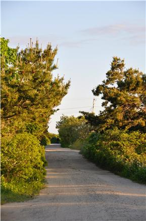 Surfside Nantucket vacation rental - This our street, at the end of the street is a beautiful beach