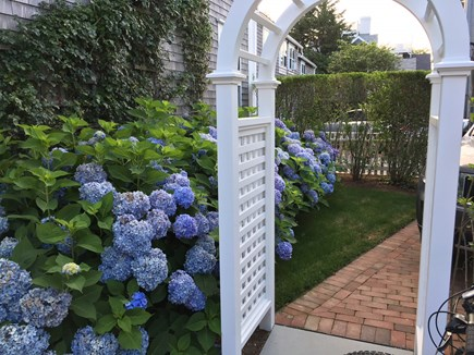 Nantucket town Nantucket vacation rental - Pretty arbor with loads of summer hydrangeas. Parking for 1 car.