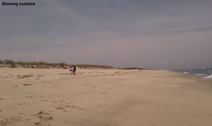 Wauwinet Nantucket vacation rental - Squam beach-A short walk to beautiful, quiet,private Sqaum beach
