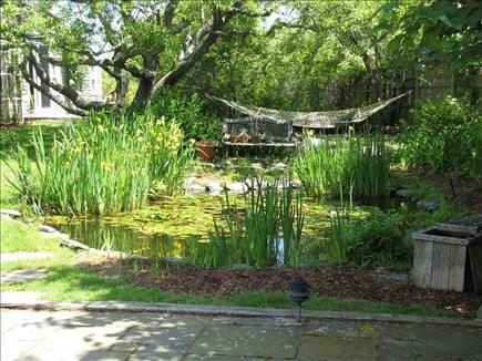 Nantucket town, Nantucket Nantucket vacation rental - Zen garden