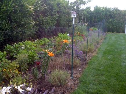 Siasconset Nantucket vacation rental - Flower garden
