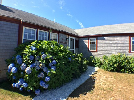 Madaket Nantucket vacation rental - Welcome to your summer vacation