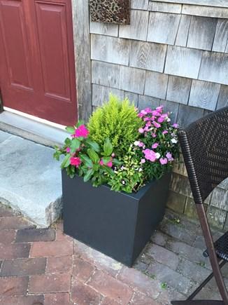 Nantucket town, Nantucket Nantucket vacation rental - Flower Box at door