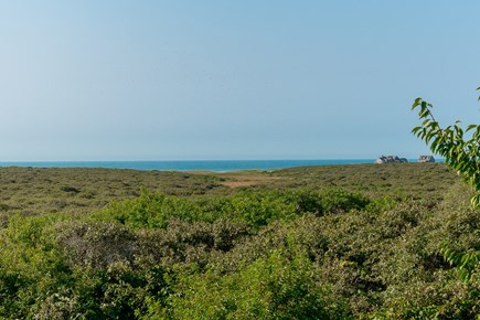Madequecham Nantucket vacation rental - Unobstructed view from house of Conservation Land and Atlantic