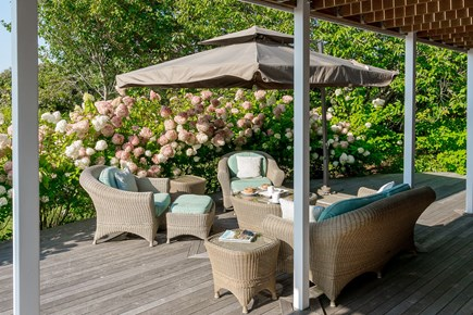 Madequecham Nantucket vacation rental - Outdoor seating under large patio umbrella in sea of hydrangeas!