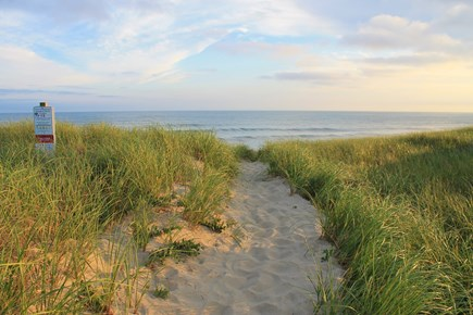 Nantucket town, Town Center Nantucket vacation rental - Grassy sand dunes are simply beautiful