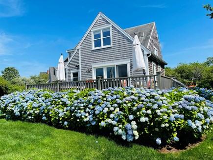 Nantucket town Nantucket vacation rental - Large back yard - perfect for games