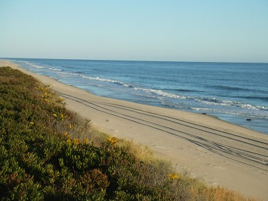 Madequecham Nantucket vacation rental - Private Beach - South Shore Cliff