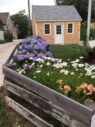 Nantucket town Nantucket vacation rental - Side yard
