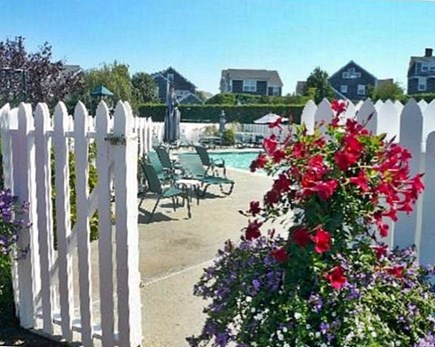 Mid-island, Naushop Nantucket vacation rental - Poolside Flowers Abound