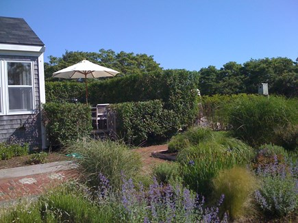 Tom Nevers / 'Sconset Nantucket vacation rental - Lush perennial gardens
